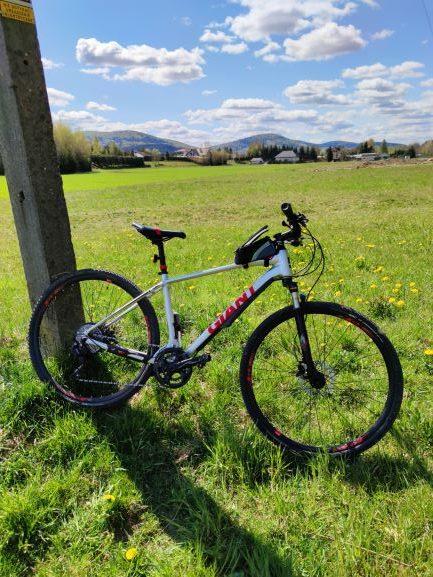 rower na tle trawy